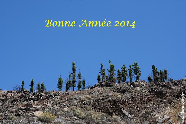 Bonne année 2014 © Guillaume Chevalier